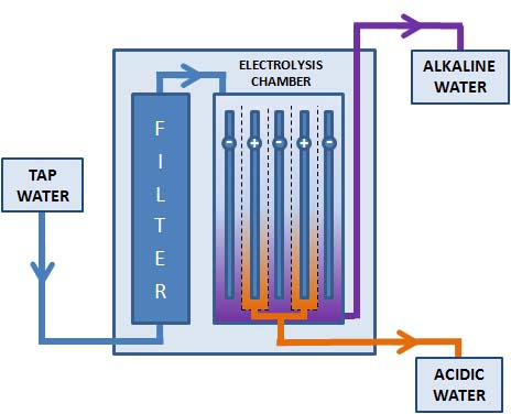 how does a water ionizer work
